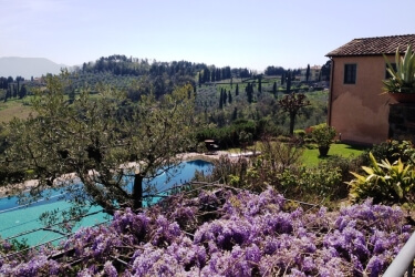 Il Borghino Retreat Centre Springtime Wisteria