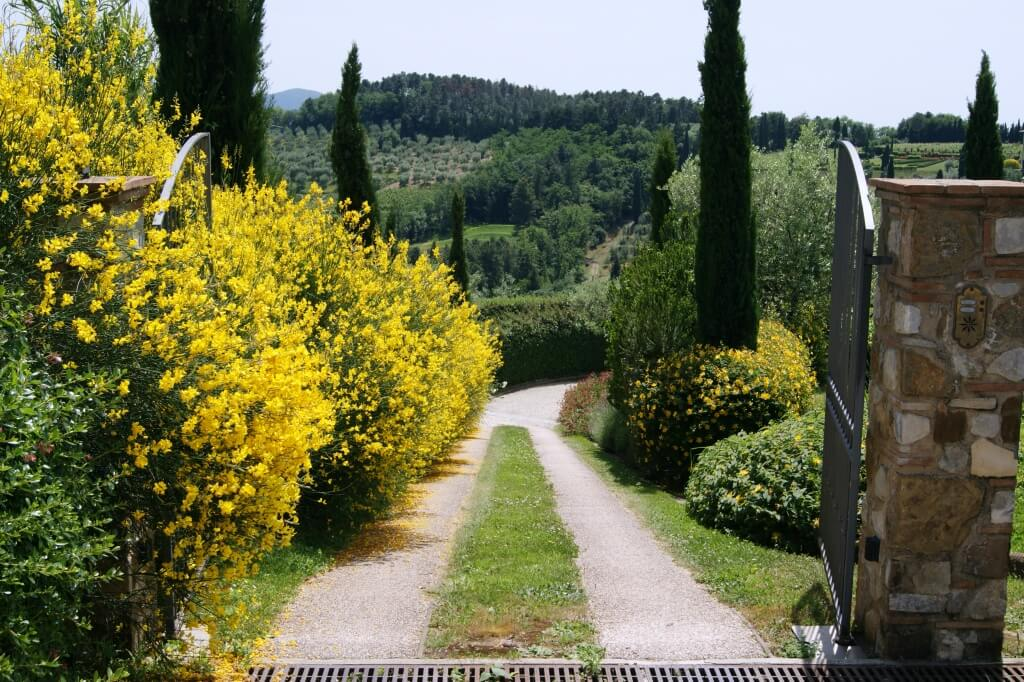 Yoga in Italy - Il Borghino Retreat Centre