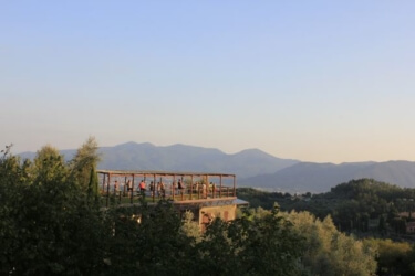 Yoga shala overlooking olive groves and vineyards