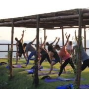 Outdoor Yoga Shala overlooking vineyards and olive grives
