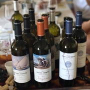 Wine Tasting Excursion. Yoga Retreat Italy